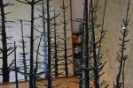Der Wald steht schwarz und schweiget